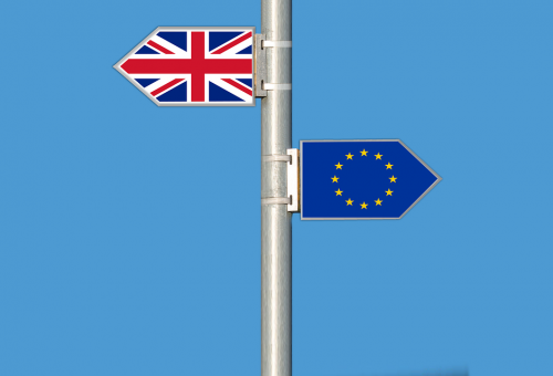 BREXIT : a need for flexibility in an unknown environment
